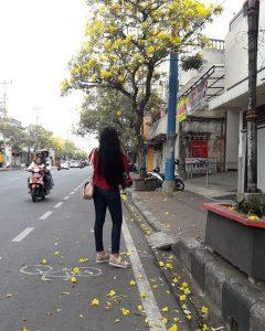Bunga Tabebuya Surabaya IG 7