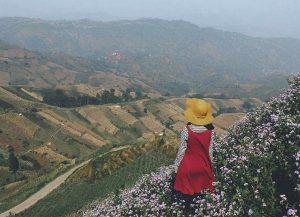 Keindahan Wisata Terasering Panyaweuyan Argapura di Majalengka Bikin Betah